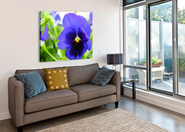 BLUE FLOWERS PHOTOGRAPH KATHERINE LINDSEY PHOTOGRAPHY  Canvas Print