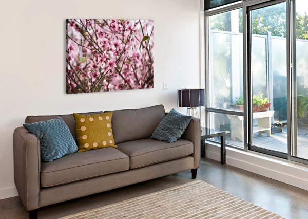 PINK FLOWERS LAMBYSNAPS  Canvas Print