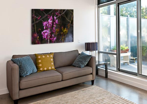 PINK TREES LAMBYSNAPS  Canvas Print
