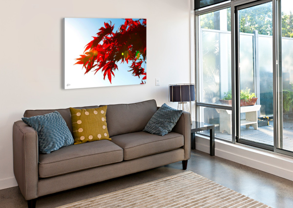 CHINESE MAPLE RONNIE B GOODWIN  Canvas Print