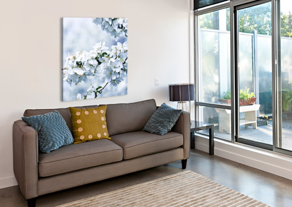 CHERRY TREE FLOWERS ALEXANDRA DRAGHICI  Canvas Print