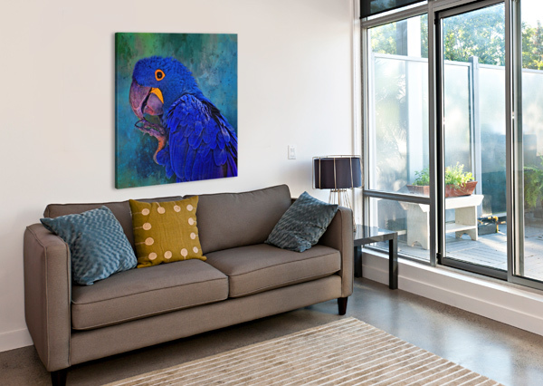 HYACINTH MACAW HH PHOTOGRAPHY OF FLORIDA  Canvas Print