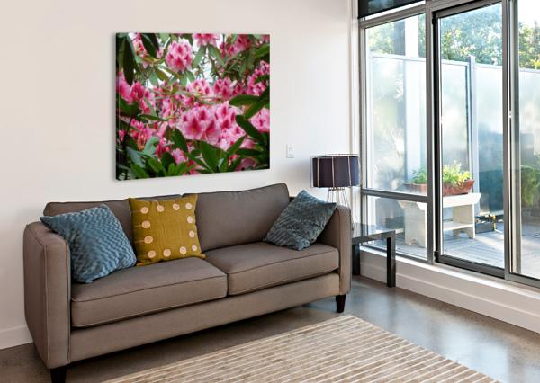 FLOWER KEITH A LORETH  Canvas Print