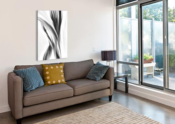 HAZY STEM LEFT  MARY CROOK  Canvas Print