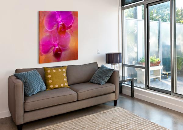 COLORFUL PHALAENOPSIS HH PHOTOGRAPHY OF FLORIDA  Canvas Print