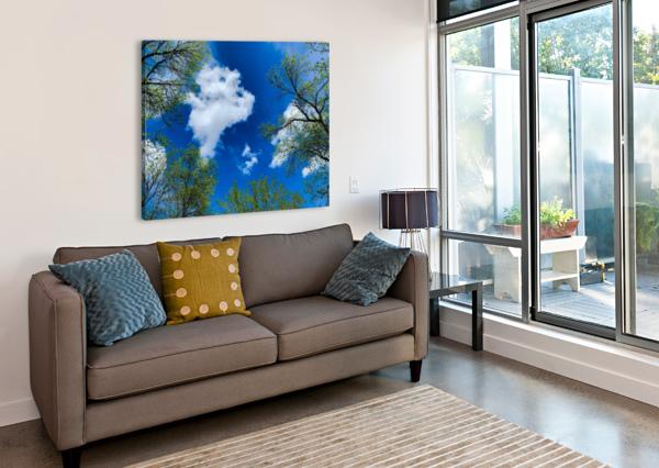 BLISS A SKY  VORTEXSTYLE   Impression sur toile