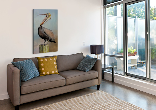 BELLY LAUGH-BROWN PELICAN  HH PHOTOGRAPHY OF FLORIDA  Canvas Print