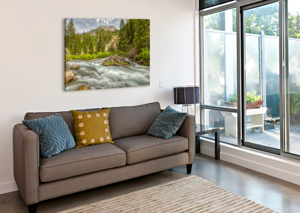 PERIODIC SPRING FLOWING INTO SWIFT CREEK BRIAN J RILEY  Canvas Print
