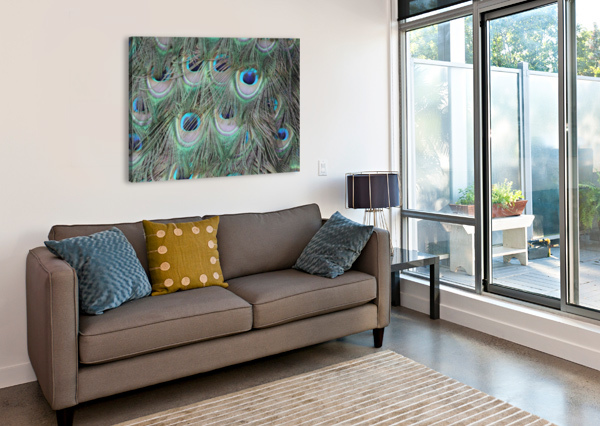 PEACOCK FEATHER PATTERN PLUMAGE SHAMUDY  Canvas Print
