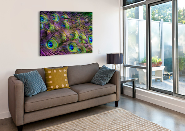 GREEN PURPLE AND BLUE PEACOCK FEATHER DIGITAL WALLPAPER SHAMUDY  Canvas Print
