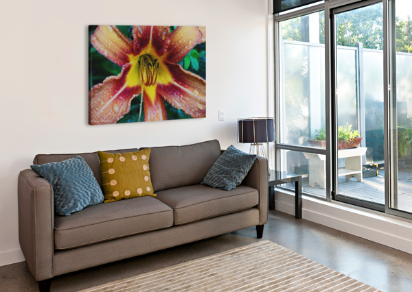 EYE OF THE TIGER LILY AMBER NORCROSS  Canvas Print