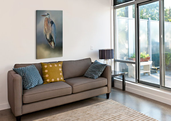 GREAT BLUE HERON AT REST HH PHOTOGRAPHY OF FLORIDA  Canvas Print