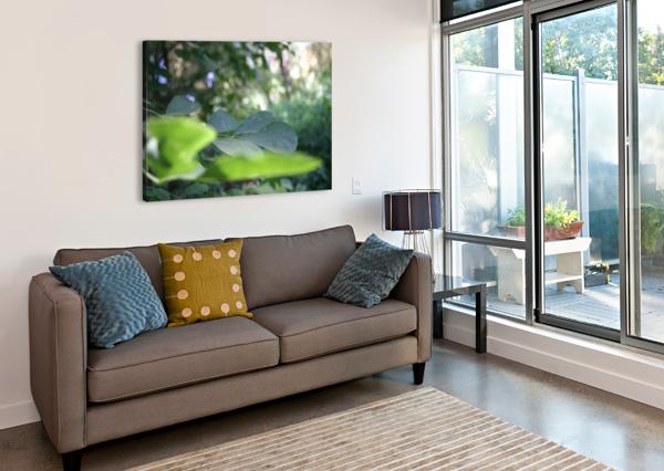 BLUR LEAF BC PHOTOGRAPHY  Canvas Print