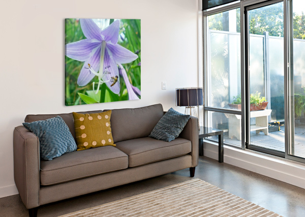 PURPLE FLOWER AMBER NORCROSS  Canvas Print