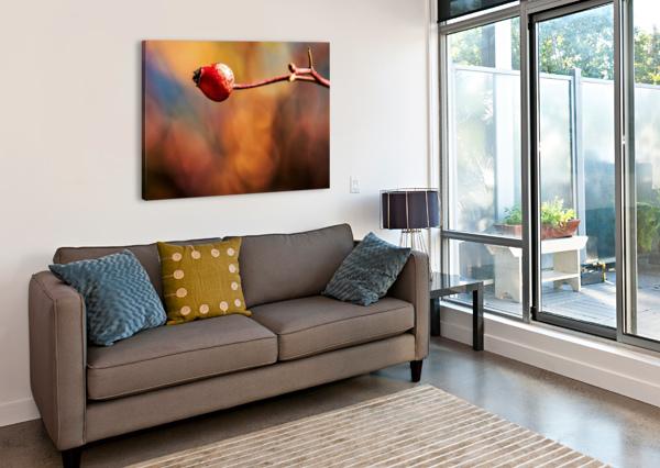 RED BUD ANN SKROBOT  Canvas Print