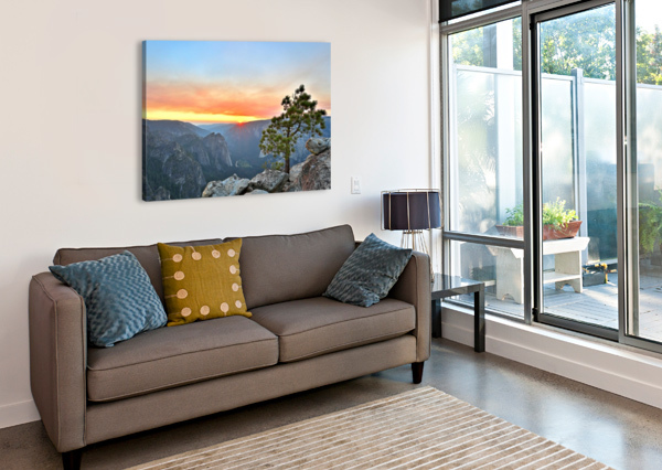DREAM IN YOUR HEART JONGAS PHOTO  Canvas Print