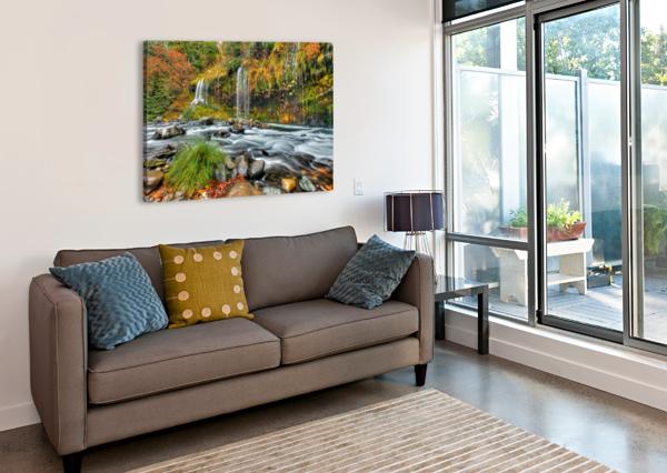 COLORFALL JONGAS PHOTO  Canvas Print