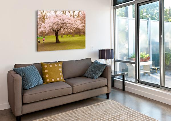 BLOSSOM TREE BUNNOFFEE PHOTOGRAPHY  Canvas Print