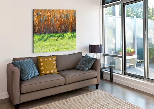 CORNSTALK SHADOWS CASTLE GREEN ENTERPRISES  Canvas Print