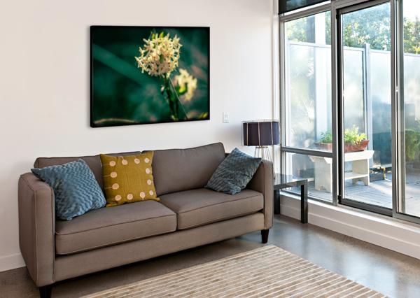 RICE FLOWER ANN SKROBOT  Canvas Print