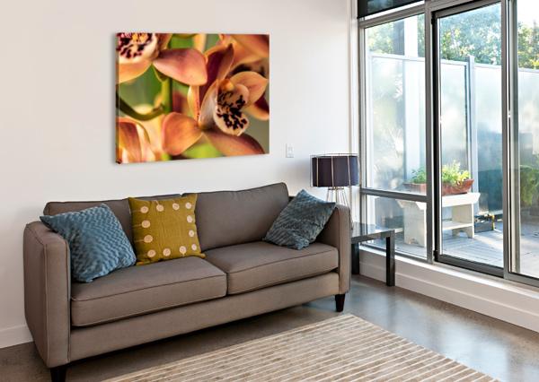 BLUSH ORCHIDS ANN SKROBOT  Canvas Print
