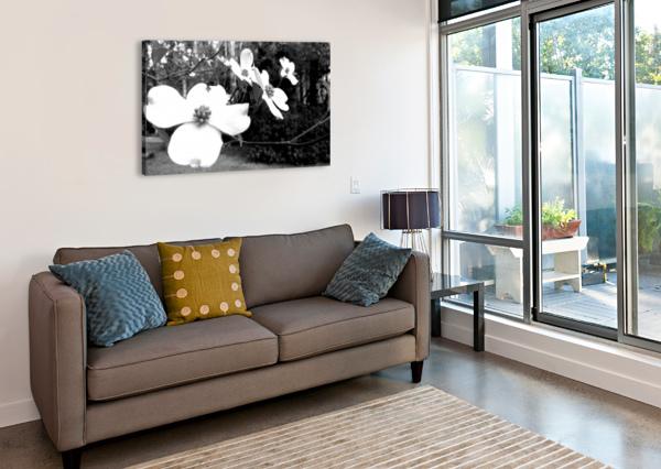 NORTH CAROLINA DOGWOOD FLOWERS  ANITA-MARIE  Canvas Print