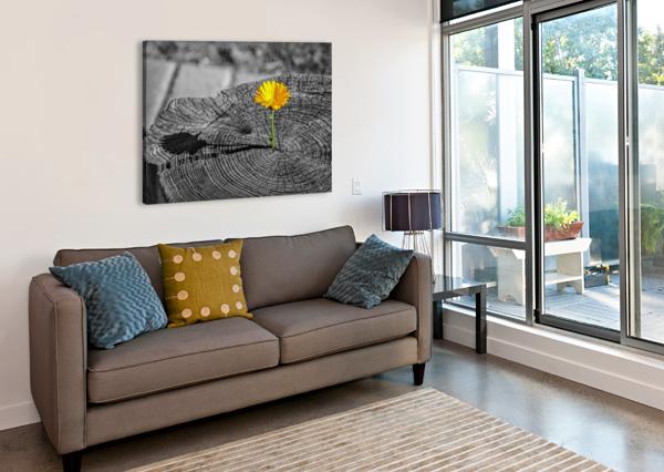 LIFE PERSISTS JONGAS PHOTO  Canvas Print
