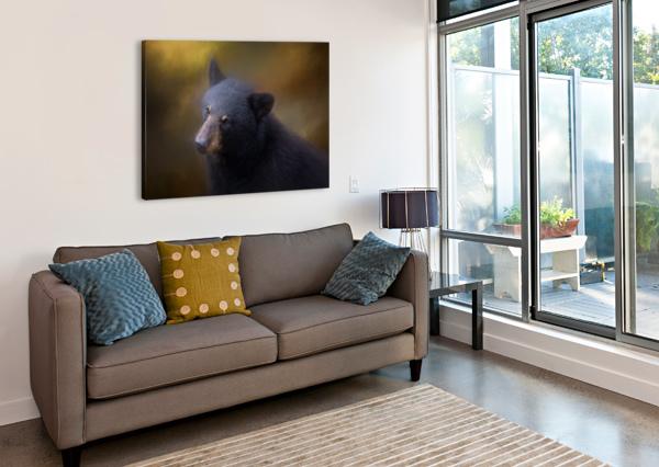 BLACK BEAR PORTRAIT MICHEL SOUCY  Canvas Print