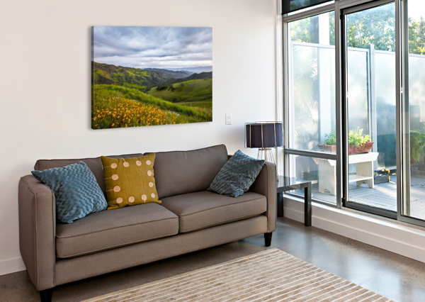 CALIFORNIA IS HOME JONGAS PHOTO  Canvas Print