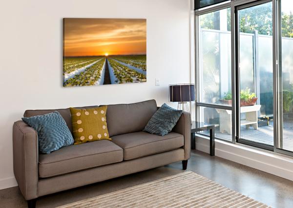 STRAWBERRIES IN MAKING JONGAS PHOTO  Canvas Print
