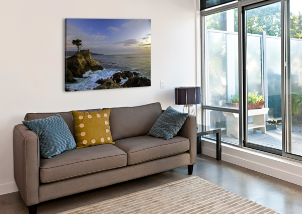 FOREVER ALONE JONGAS PHOTO  Canvas Print
