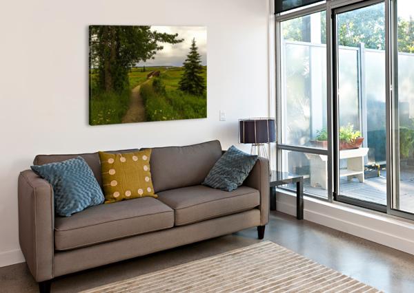 WALKING HOME JONGAS PHOTO  Canvas Print