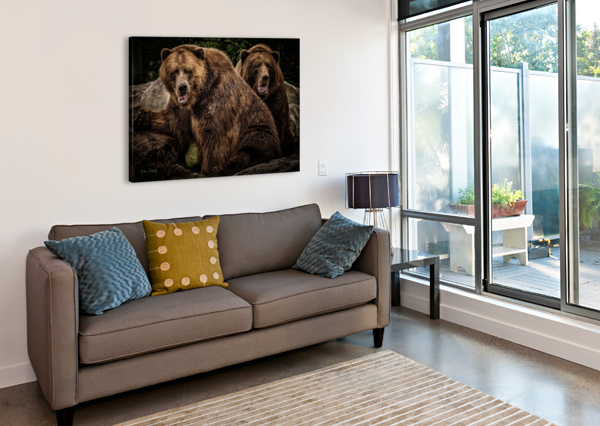 BROWN BEAR BROTHERS JULIAN STARKS PHOTOGRAPHY  Canvas Print
