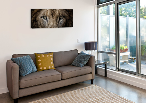 GUESS WHO JULIAN STARKS PHOTOGRAPHY  Canvas Print