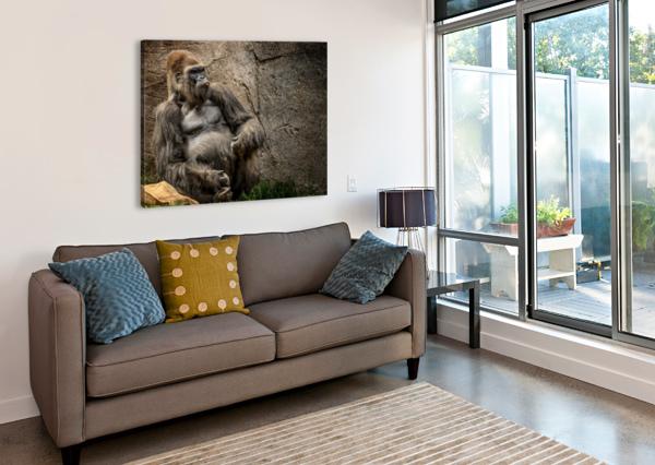 BIG DADDY SILVERBACK GORILLA JULIAN STARKS PHOTOGRAPHY  Canvas Print