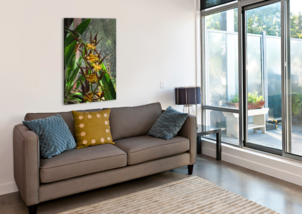 HAWAIIAN ORCHIDS  AURELIA SCHANZENBACHER SISTERS FINE ARTS  Canvas Print