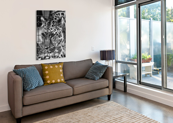 LEOPARD IN BLACK & WHITE CONNIE MAHER  Canvas Print