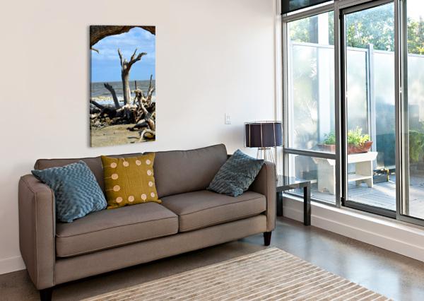 DRIFTWOOD BEACH UPLIFTING BILL SWARTWOUT PHOTOGRAPHY  Canvas Print