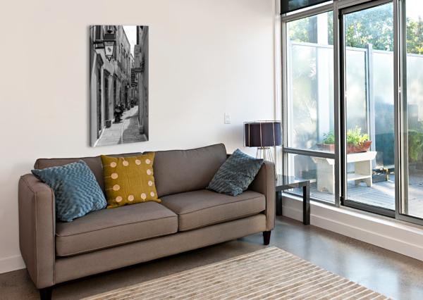 _TEL3761 EDIT TELLY GOUMAS   Canvas Print
