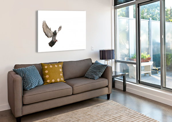 TAKE FLIGHT VICTOR ROSE PHOTO  Canvas Print