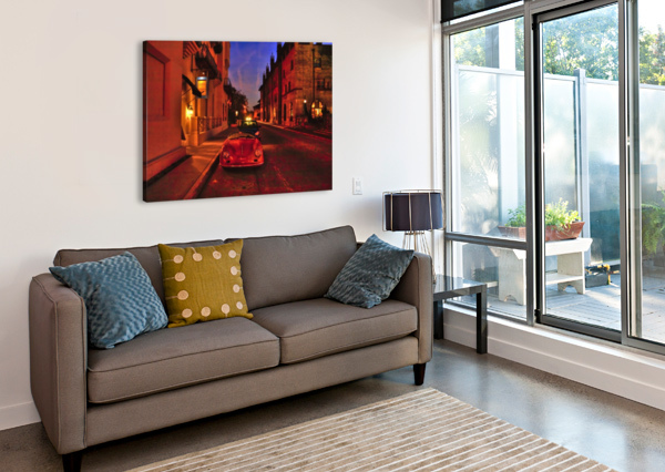 IMG_8420_TONEMAPPED_FILTERED EGALITARIAN ART GALLERY  Canvas Print
