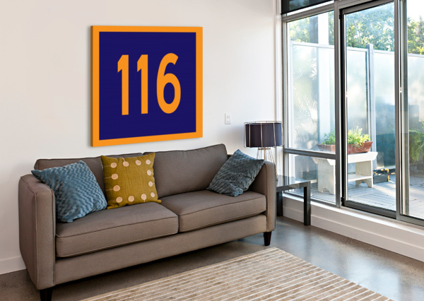 NUMBER 116 DEPACE-  Canvas Print