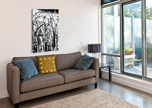 BLACK & WHITE NATURE TEXTURE CANDID ART  Canvas Print