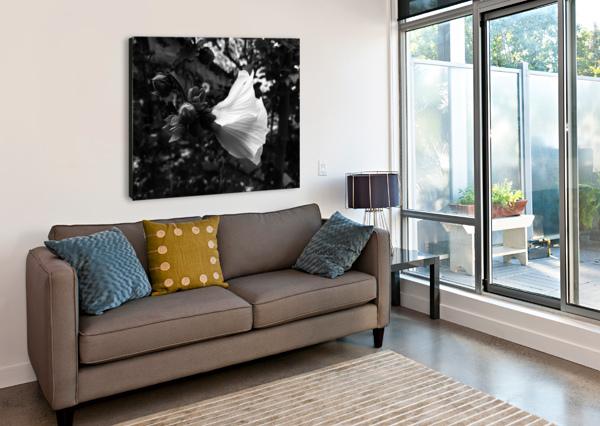 BLOOMING FLOWER IN BLACK AND WHITE MICHAL DUNAJ  Canvas Print