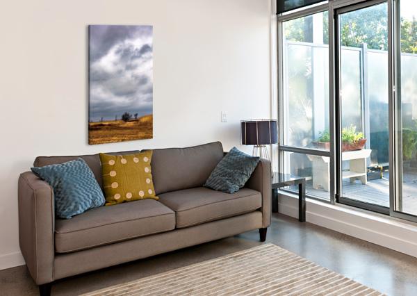 OR ET ARGENT DANIEL THIBAULT ARTISTE-PHOTOGRAPHE  Canvas Print
