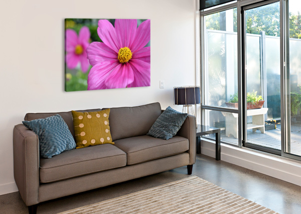 PINK FLOWERS PHOTOGRAPH KATHERINE LINDSEY PHOTOGRAPHY  Canvas Print