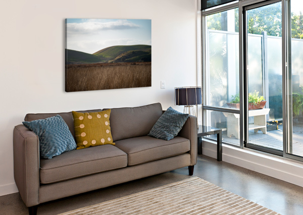COYOTE HILLS DURING SUNSET DAVID YOON  Canvas Print