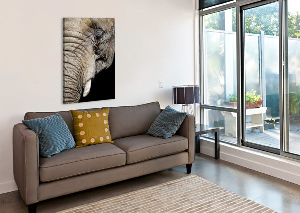 ELEPHANT CLOSE UP DAVID YOON  Canvas Print