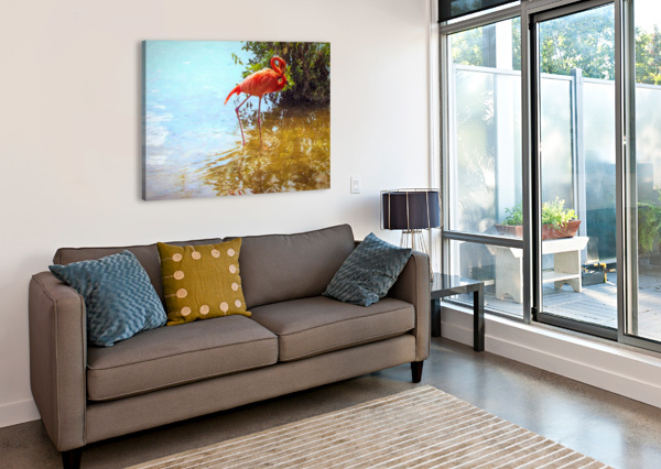 PINK FLAMINGO WADING IN WATER JACQUELINE SLETER  Canvas Print