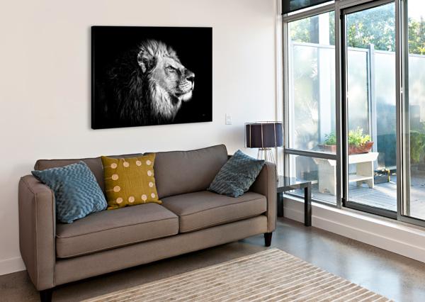 LION WITH ATTITUDE DEPACE-  Canvas Print